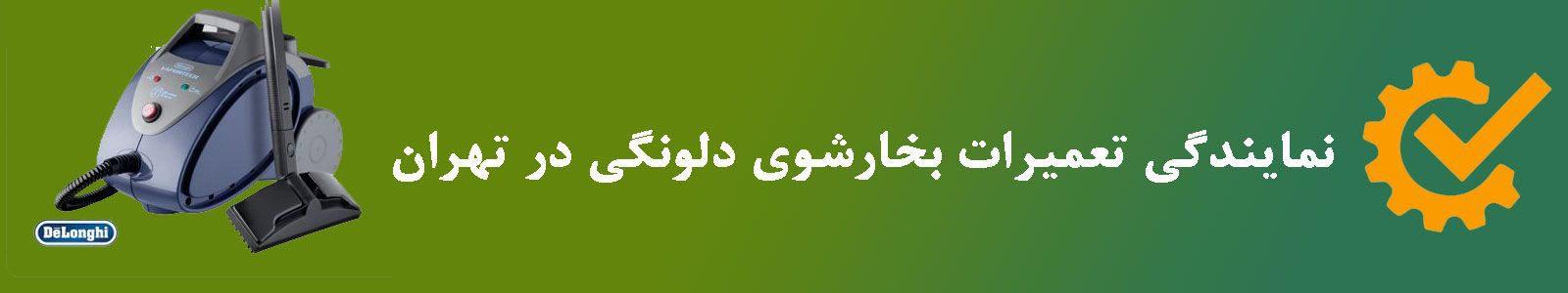 نمایندگی تعمیرات بخارشوی دلونگی در تهران